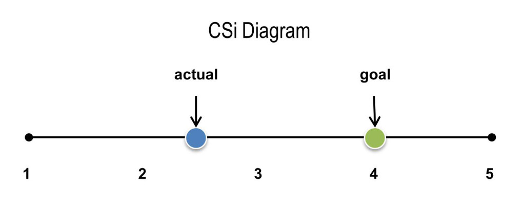 CSi Diagram