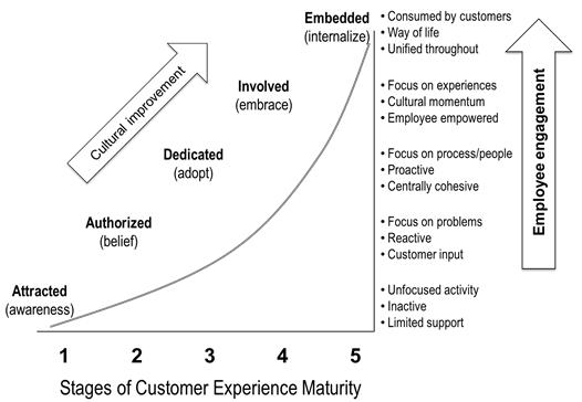 CSi maturity model