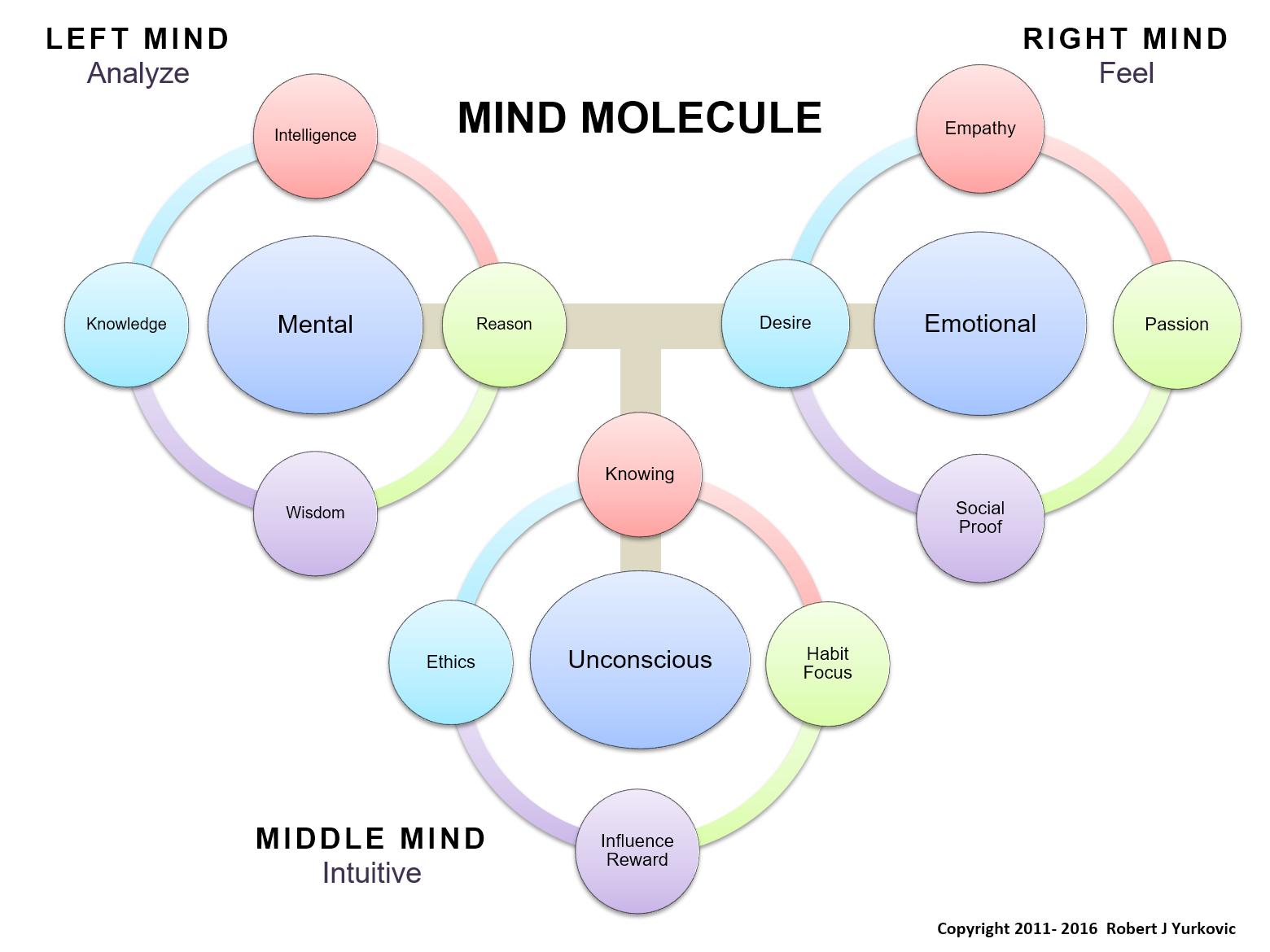 Mind Molecule
